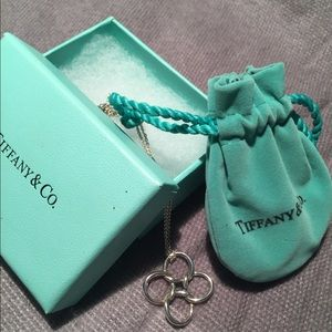 Tiffany necklace!  Never worn.